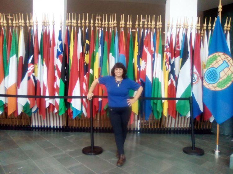 The Hague Flags.jpg